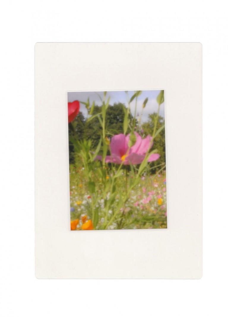Maria Eisl London Fields Folder
